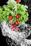Tomates-cerises mûres fraîches avec des baisses de laitue et de l'eau d'isolement sur le noir, concept de légumes de récolte Photographie stock libre de droits