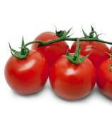 Tomates-cerises sur le blanc Images libres de droits
