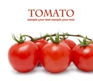 Tomates-cerises sur le blanc Images stock
