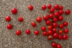 Tomates-cerises VI Photos libres de droits