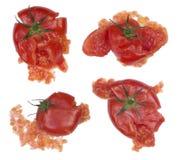 Tomates éclaboussées d'isolement sur le blanc Photos libres de droits