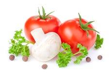 Tomates, cogumelos de tecla, salsa e pimenta da Jamaica imagens de stock
