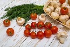 Tomates, cogumelos e ervas Imagem de Stock Royalty Free