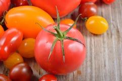 Tomates colorées Image libre de droits