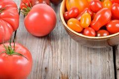 Tomates colorées Images libres de droits