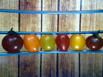 Tomates colorées dans une rangée Photos stock
