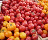 Tomates coloridos foto de archivo