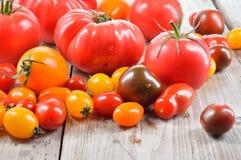 Tomates coloridos Imagenes de archivo