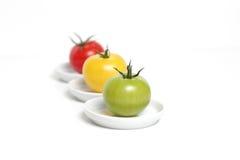 Tomates coloridos em placas fotos de stock royalty free