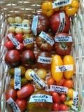 Tomates coloridos en la cesta 2 Fotografía de archivo libre de regalías