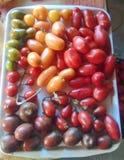 Tomates coloridos en la placa Foto de archivo libre de regalías