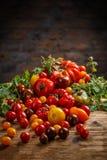 Tomates coloridos sanos fotografía de archivo