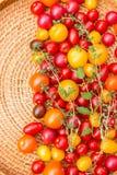 Tomates coloridos sortidos Fotografia de Stock