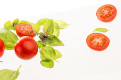 Tomates com manjericão no fundo branco imagem de stock