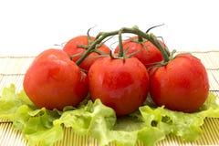 Tomates com os ramos no fundo de madeira com alface Imagem de Stock