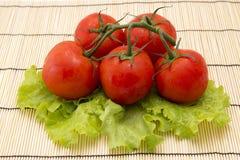 Tomates com os ramos no fundo de madeira com alface Fotografia de Stock