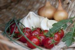 Tomates com vegetais e as ervas diferentes Fotos de Stock