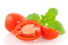 Tomates con albahaca Foto de archivo libre de regalías