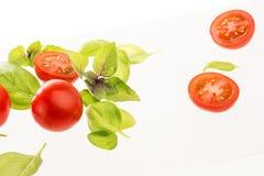 Tomates con albahaca en el fondo blanco imagen de archivo