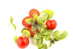 Tomates con albahaca en el fondo blanco imagen de archivo libre de regalías