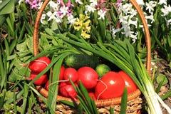Tomates, concombres et oignons juteux dans un panier dans le jardin entour? par des fleurs de ressort avec le plan rapproch? de b images libres de droits