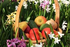 Tomates, concombres et pommes juteux dans un panier dans le jardin entouré par des fleurs de ressort avec le plan rapproché de ba photos libres de droits