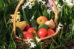 Tomates, concombres et pommes juteux dans un panier dans le jardin entour? par des fleurs de ressort avec le plan rapproch? de ba image libre de droits