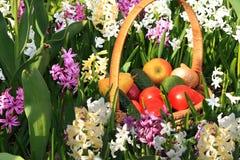Tomates, concombres et pommes juteux dans un panier dans le jardin entour? par des fleurs de ressort avec le plan rapproch? de ba photographie stock