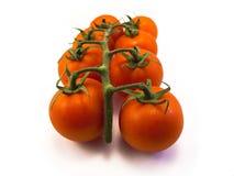 Tomates connectées à la vigne Photographie stock libre de droits