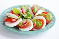 Tomates coupées en tranches avec du fromage de mozzarella Photos libres de droits