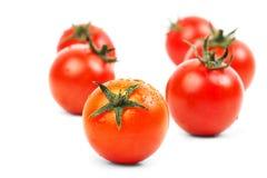 Tomates crudos frescos aislados Foto de archivo libre de regalías