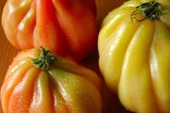 Tomates d'héritage Photos stock