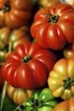 Tomates d'héritage images stock