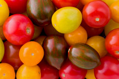 Tomates d'héritage photo stock