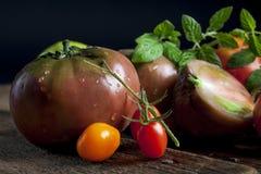 Tomates 2 d'héritage image libre de droits