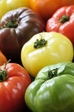 Tomates d'héritage image libre de droits