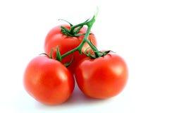 Tomates d'isolement photographie stock libre de droits