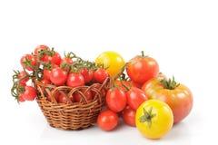 Tomates d'isolement Photos libres de droits