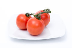 Tomates d'isolement Images libres de droits