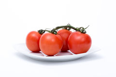 Tomates d'isolement Photo stock