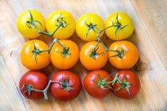 Tomates da cor fotografia de stock