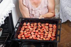 tomates da fritada da dona de casa Imagem de Stock
