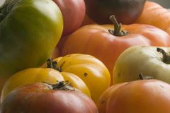 Tomates da herança Fotografia de Stock Royalty Free