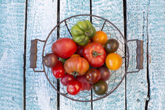Tomates da herança na cesta imagens de stock