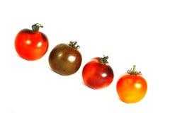 Tomates da herança no fundo branco Fotos de Stock