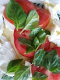 Tomates da manjericão e salada frescos do mozzarella fotos de stock