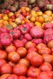 Tomates da variedade da herança Foto de Stock