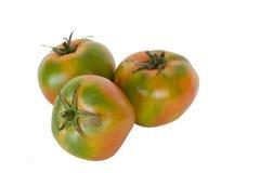 Tomates dans d'isolement Images libres de droits
