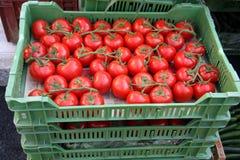 Tomates dans des caisses Photos stock