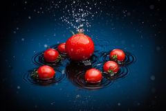 Tomates dans l'eau Photos libres de droits